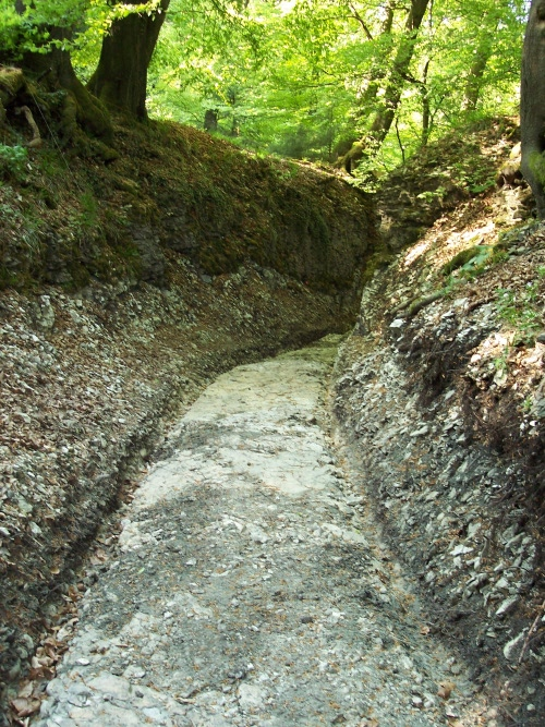Blick in den freigelegten Weg vom Pass aus (April 2008)