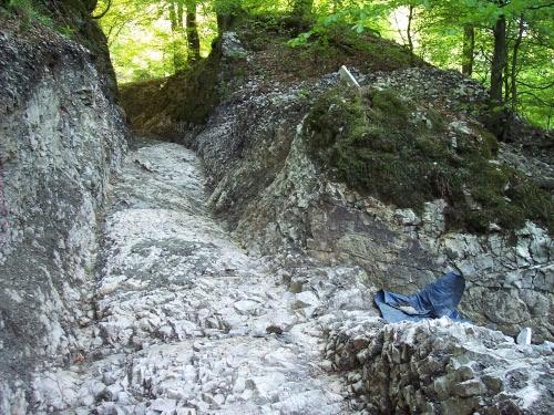 Blick von unten in den Weg (April 2008)